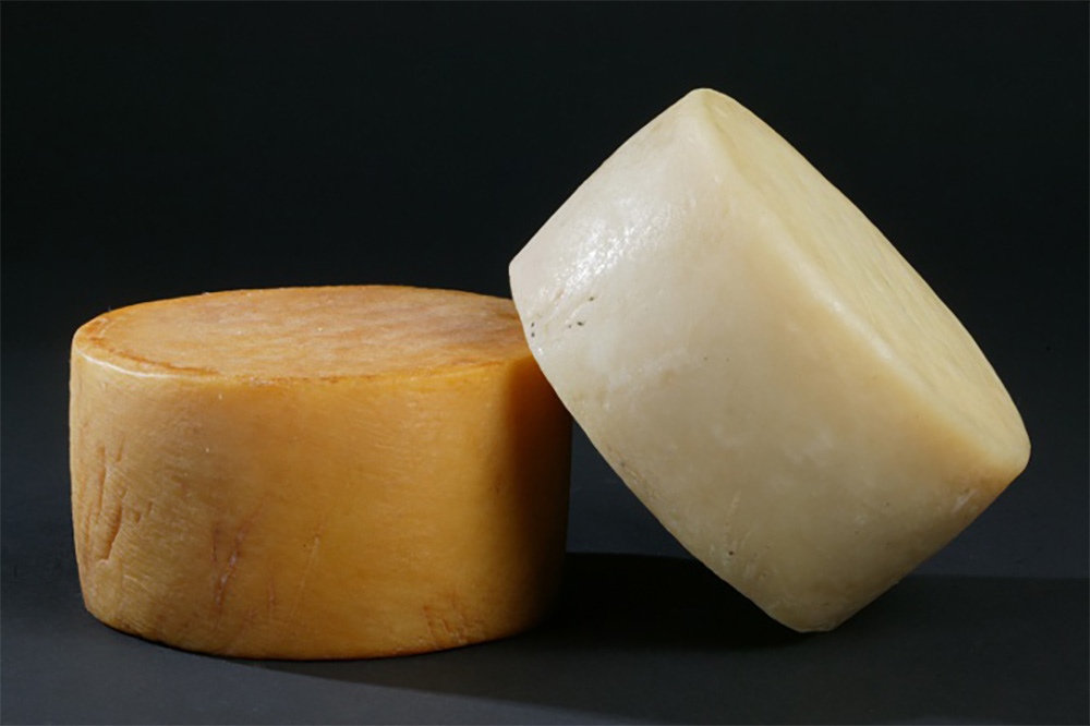 gazta-cheese copia
